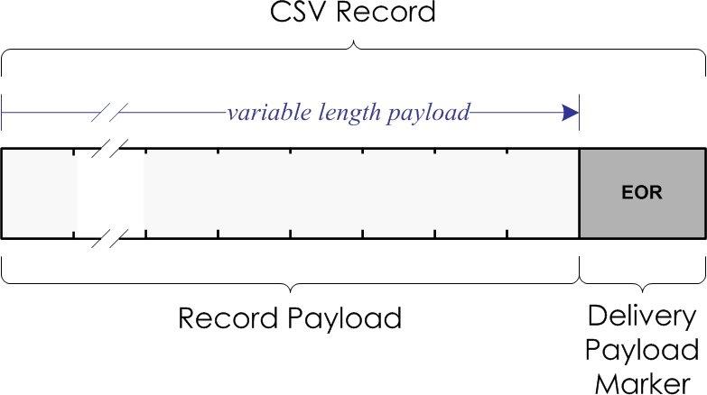 CSV record structure
