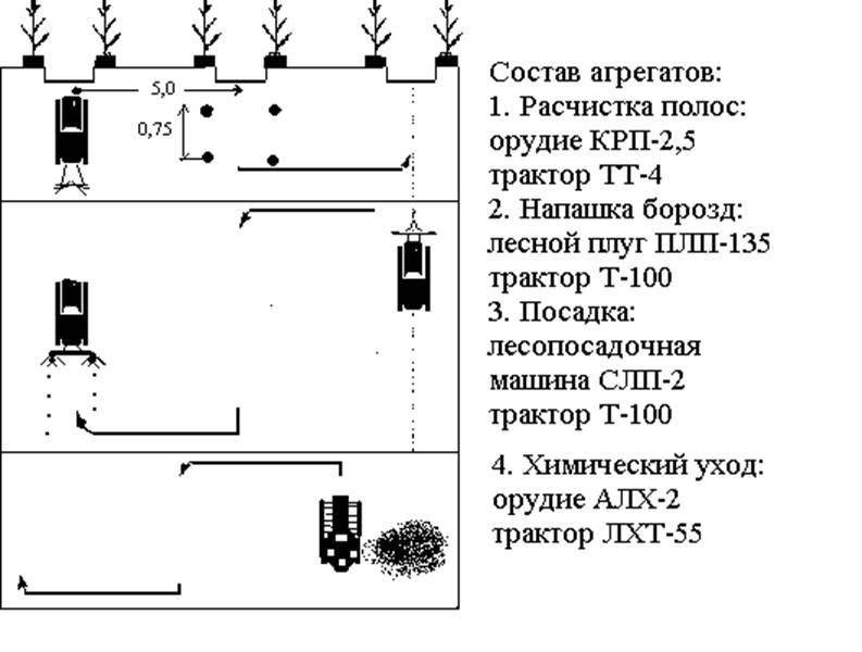 Рисунок 4.2 – Схема размещения