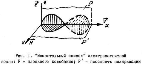 book politökonomische theorie