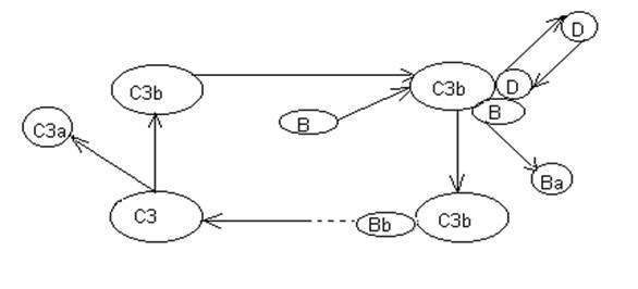 Схема альтернативного пути