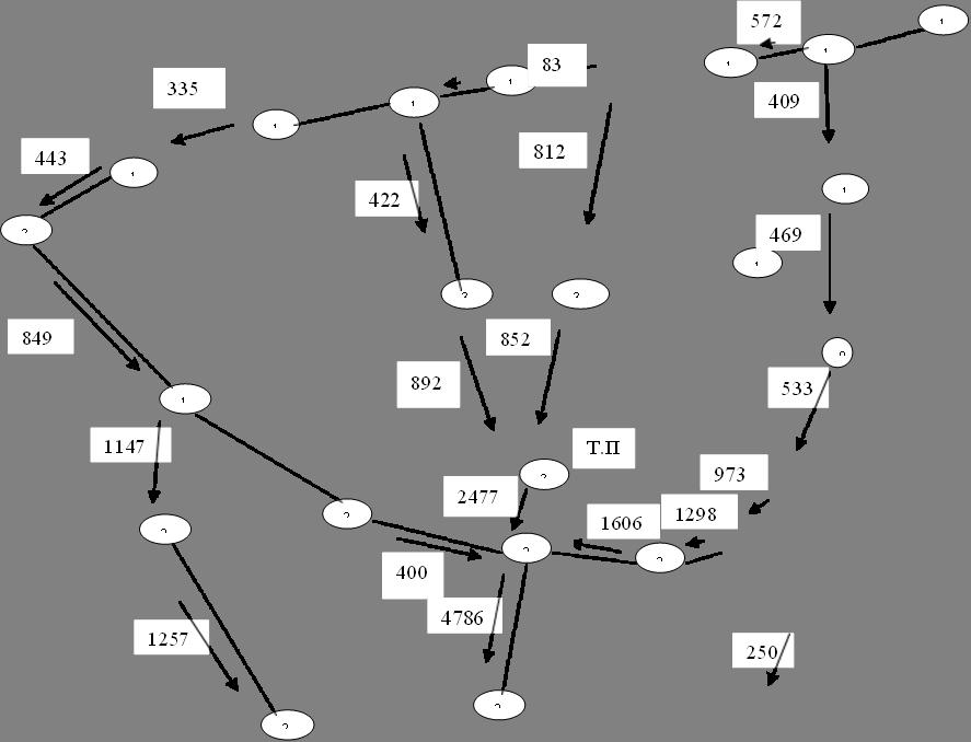 17,16,18,35,33,15,14,12,32,31,13,29,27,19,26,28,20,21,11,10,9,Т.П.,572,852,83,335,400,849,1147,422,1257,812,892,4786,250,2477,1606,1298,443,409,469,533,973