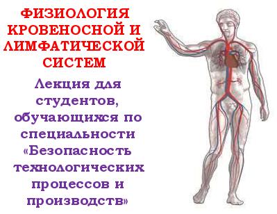 literature-fzologya-krov-lektsya